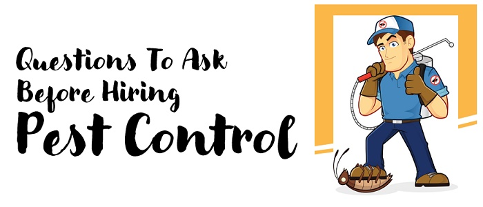 Questions to Ask before Hiring Pest Control