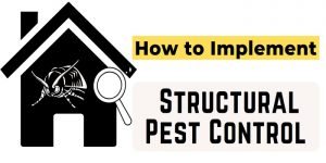 Structural Pest Control