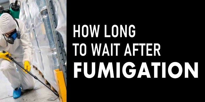 how long to wait after fumigation