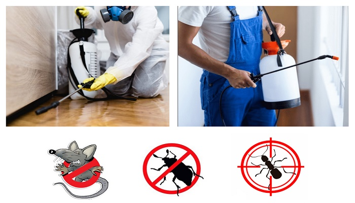 best pest control companies in the US