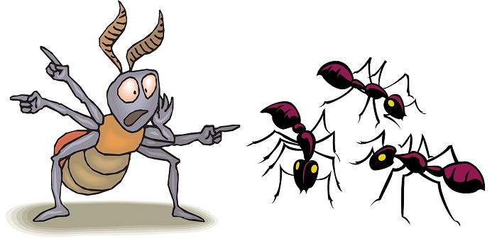 why dead ants attract more ants