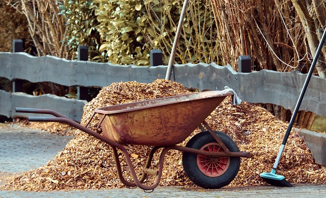 How to use mulch to keep bugs away